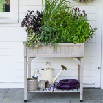 Elevated Herb Planter with dividers